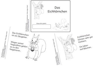 halbmini eichhoernchen niveau 1 zaubereinmaleins designblog. Black Bedroom Furniture Sets. Home Design Ideas